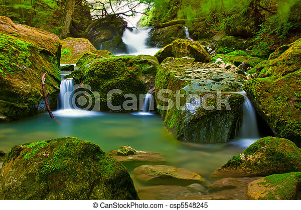 Chute eau, vert,  nature - csp5548245
