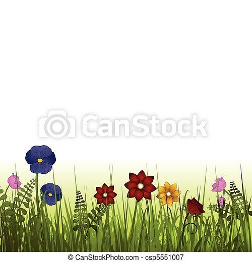 wild flowers - csp5551007