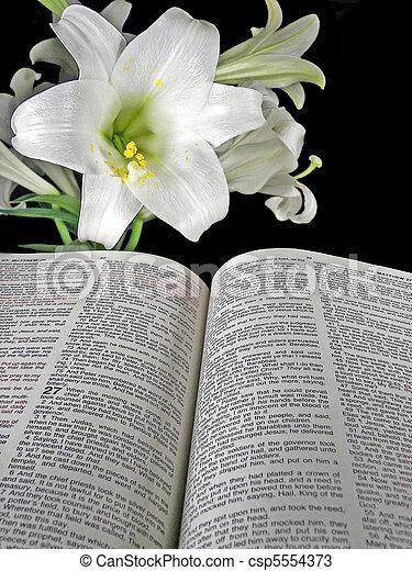 故事, 復活節 - csp5554373