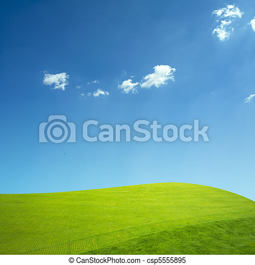Green grass and blue sky - csp5555895