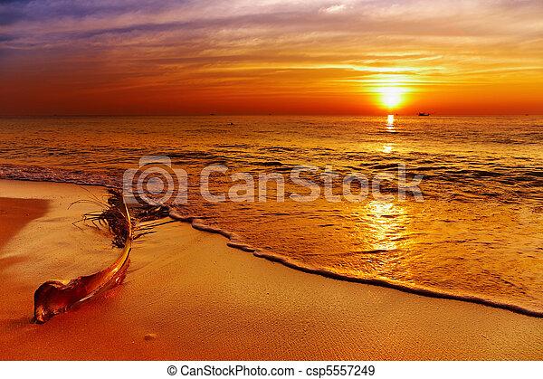 Golden sunset, Chang island, Thailand - csp5557249