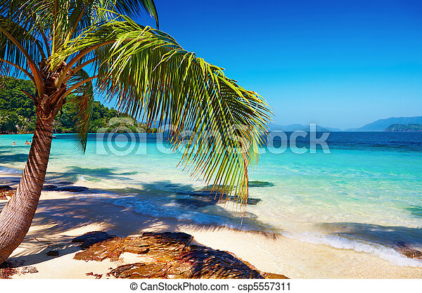 Tropical beach, Thailand - csp5557311