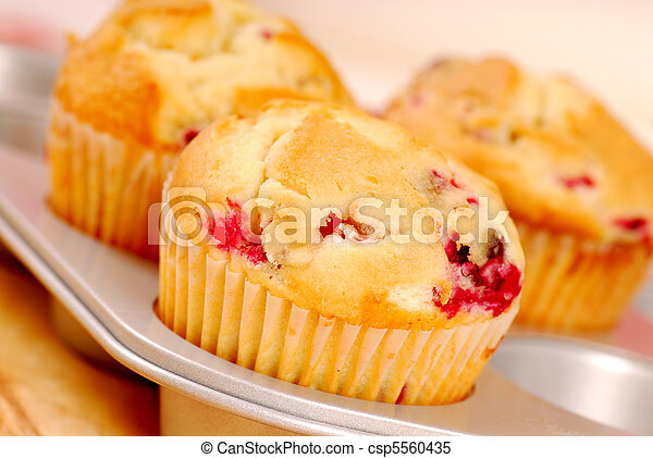 Freshly baked cranberry muffins - csp5560435