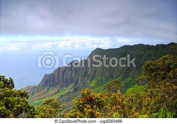 Na Pali coast of Kauai Hawaii - csp5560486