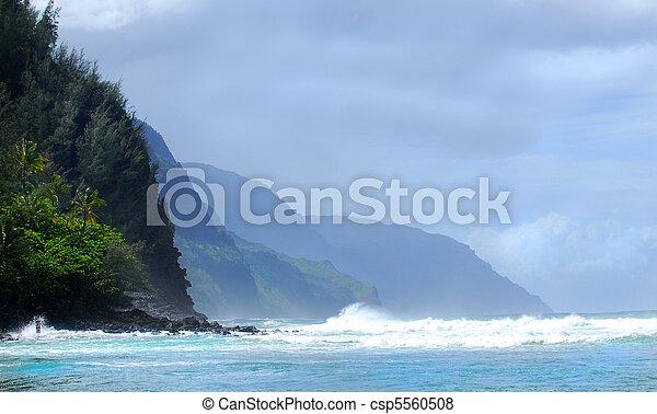 Shoreline of the Napali coast of Kauai Hawaii - csp5560508