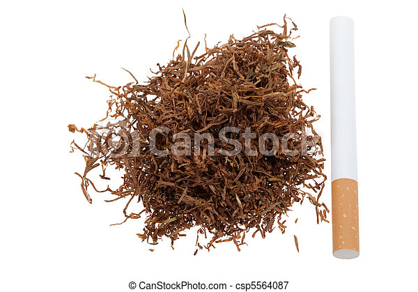 Macro of tobacco and a cigarette - csp5564087