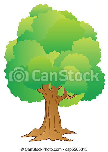 Big tree with green treetop - csp5565815