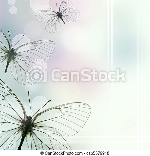 Beautiful  Background With Three Butterflies and bokeh (1 of set) - csp5579918