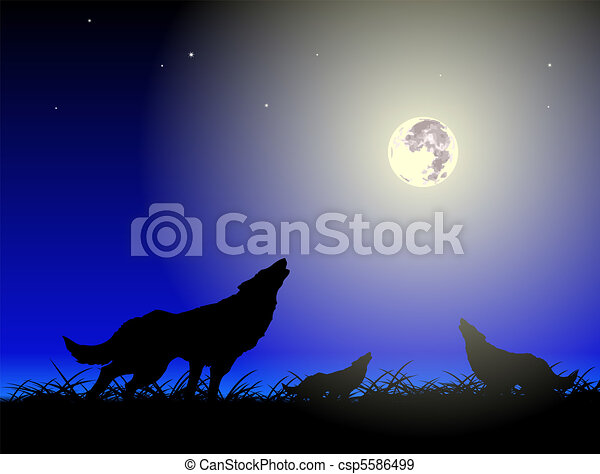 Wolfs and moon - csp5586499
