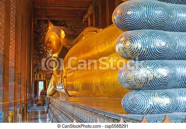 reclining buddha, wat pho, bangkok, thailand - csp5588291