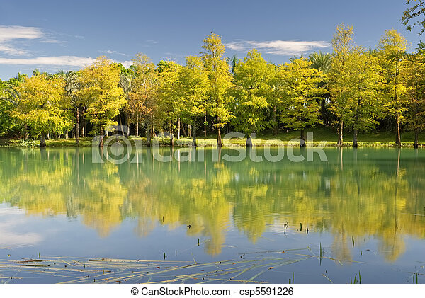 Landscape of lake