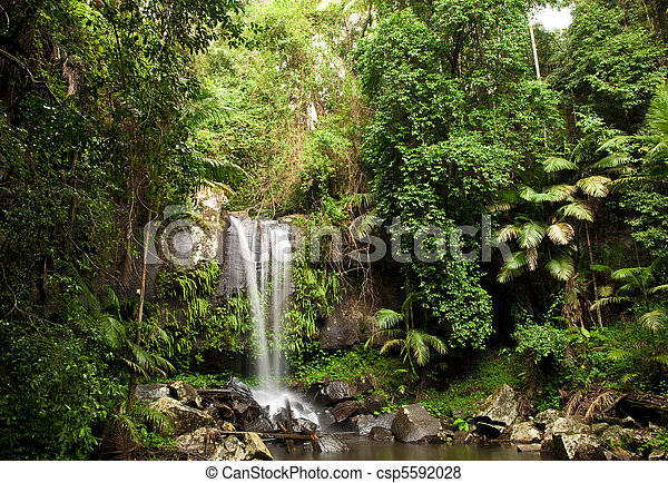 Rainforest Waterfall - csp5592028
