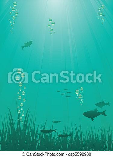 underwater sence - csp5592980