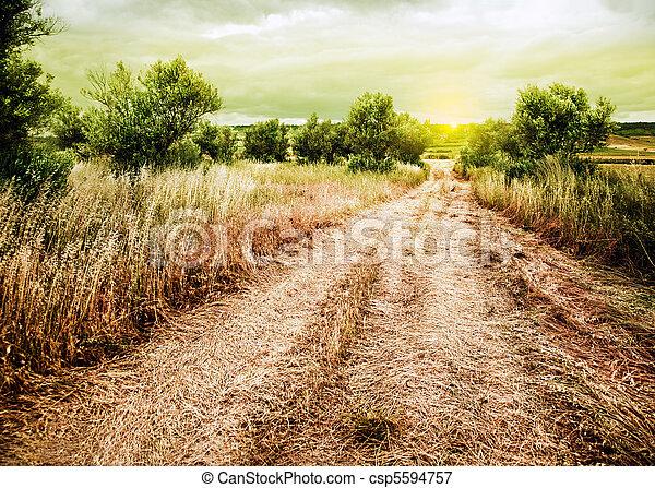 Sunset rural landscape - csp5594757