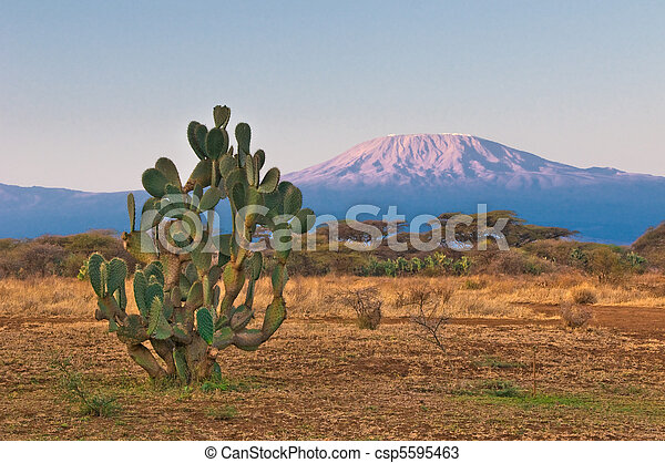 kilimanjaro mountain at the sunrise - csp5595463