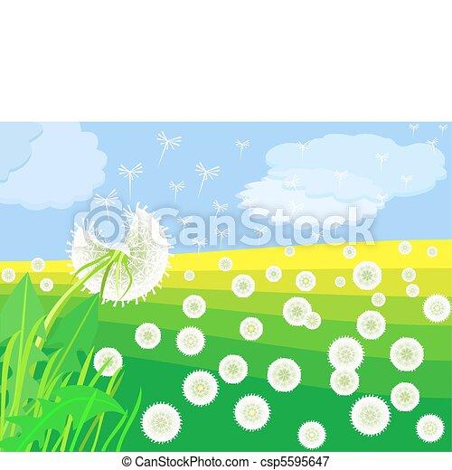 vector flowering dandelion on a green meadow - csp5595647