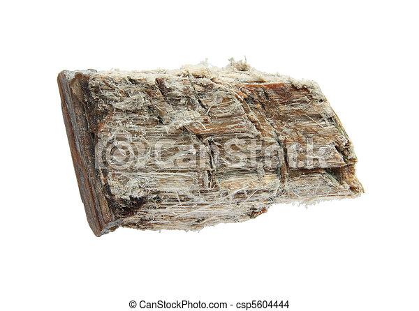 asbestos - csp5604444