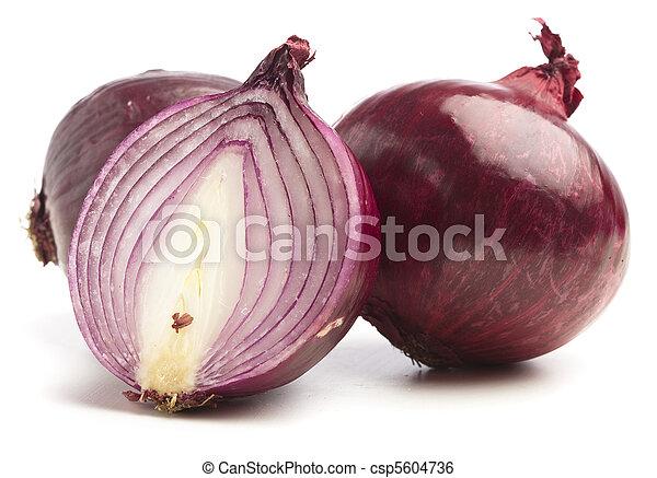 purple onion - csp5604736