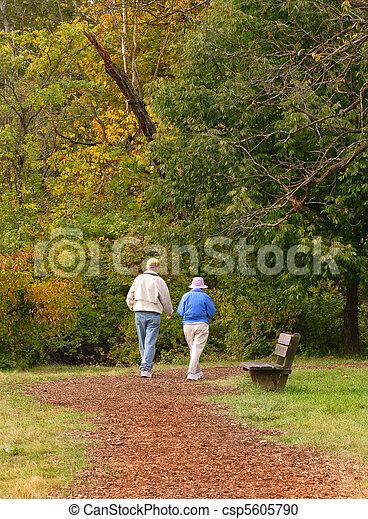 Senior citizen couple walking on path - csp5605790