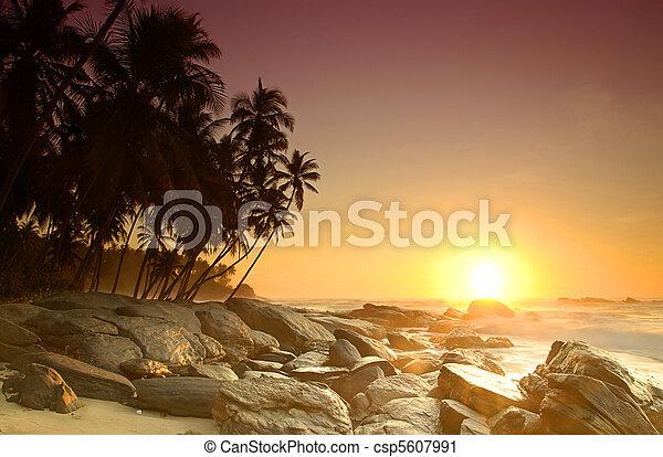 Sunrise on Sri Lanka - csp5607991