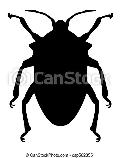 True bug silhouette - csp5623551
