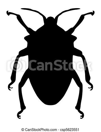 True bug silhouette - csp5623551