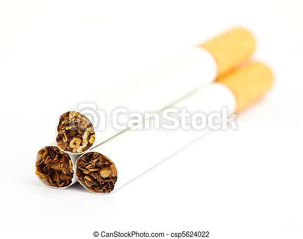 cigarette - csp5624022