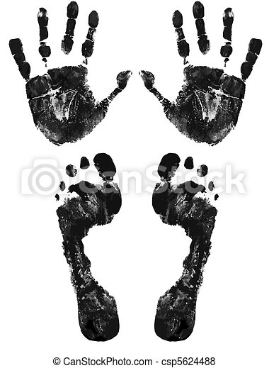 Hands and feet print - csp5624488