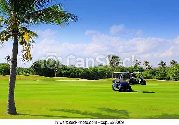 golf course tropical palm trees in Mexico - csp5626069