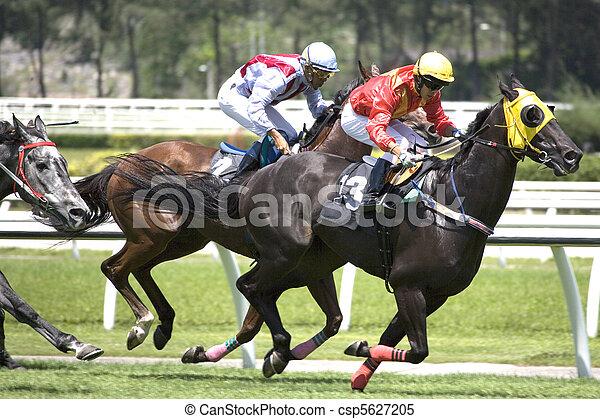 馬, 競争 - csp5627205