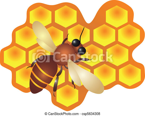 A bee filling the hive cells Vector - csp5634308