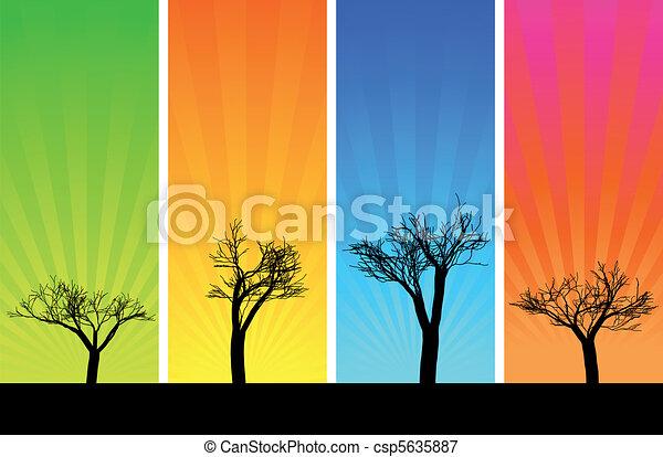 Trees and sunbeam - csp5635887
