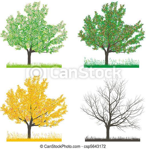 Clip art de quatre cerise arbre saisons arbre dans quatre csp5643172 recherchez des - Dessin 4 saisons ...