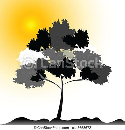 natural tree - csp5658672