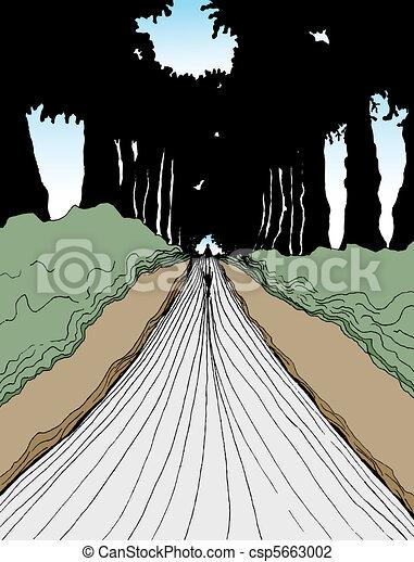 Walking Into Woods - csp5663002