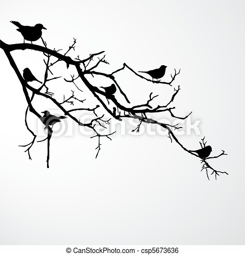 birds on branch - csp5673636