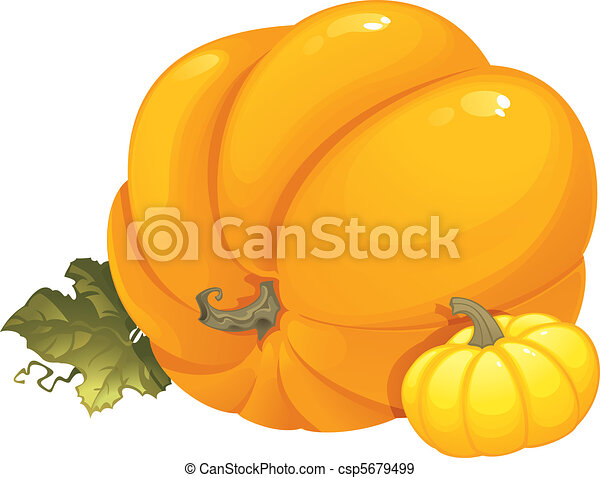 Seasonal illustration with pumpkins - csp5679499