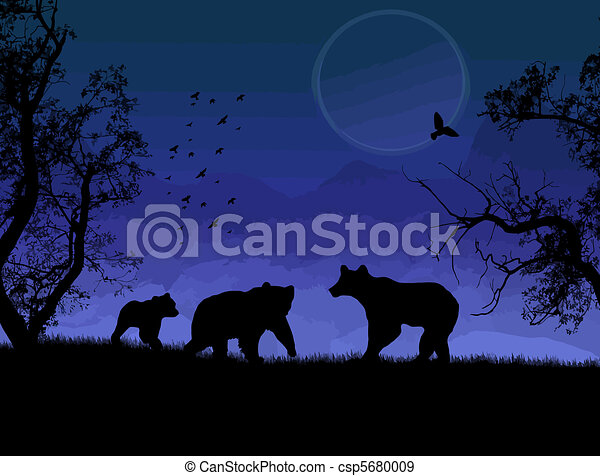 Wild bears - csp5680009