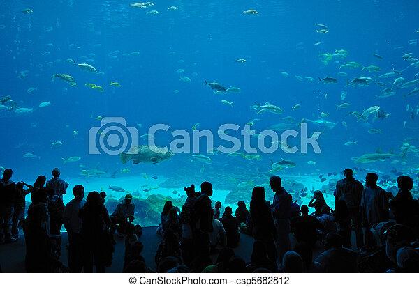Georgia Aquarium Food Court - csp5682812