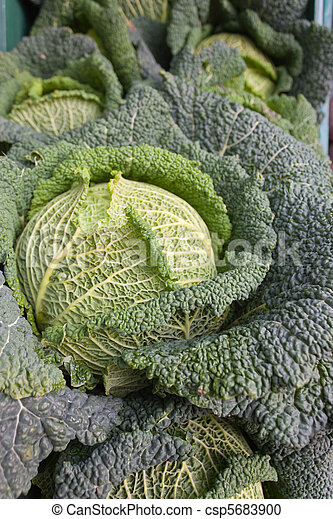 Cabbages on display outside a greengrocer's shop. - csp5683900