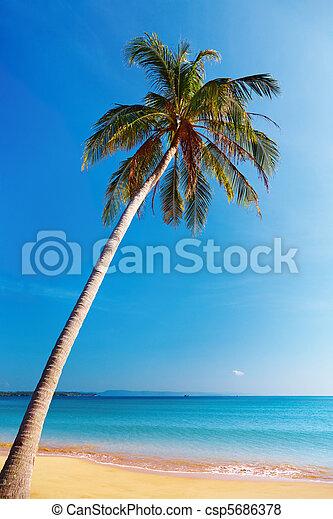Tropical beach, Thailand - csp5686378