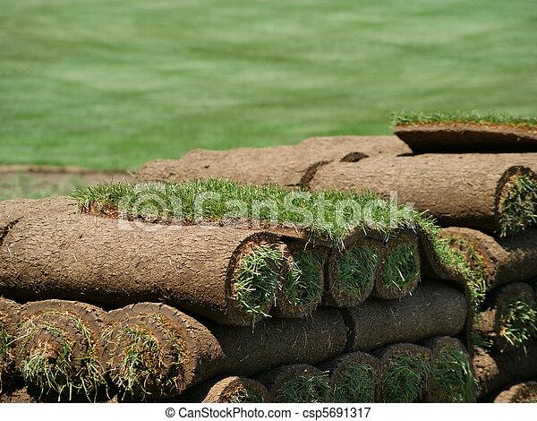 Rolls of Sod on a Turf Farm - csp5691317