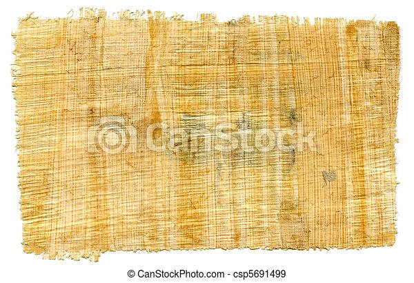 Fragment of Egyptian papyrus - csp5691499