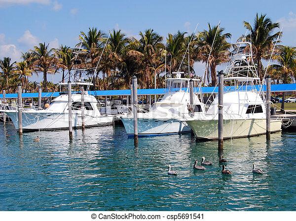 Charter Fishing Boats - csp5691541