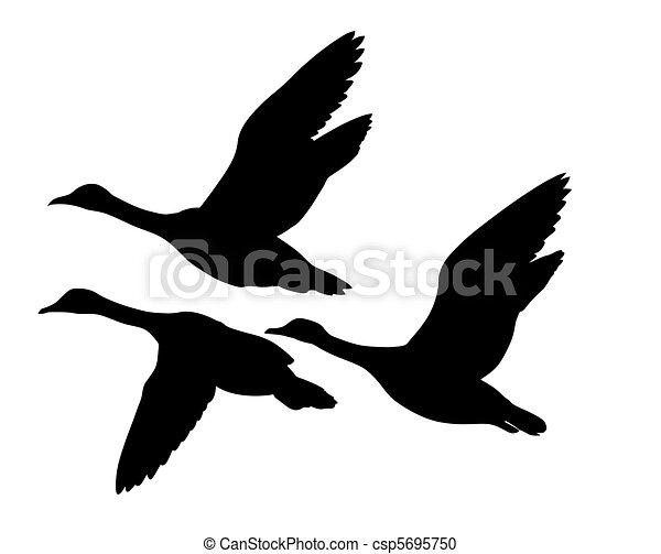 vector silhouette flying ducks on white background - csp5695750
