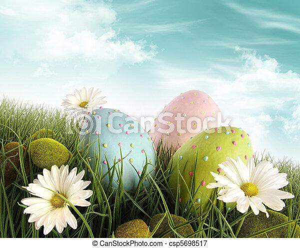 décoré, oeufs, herbe, Paques, pâquerettes - csp5698517