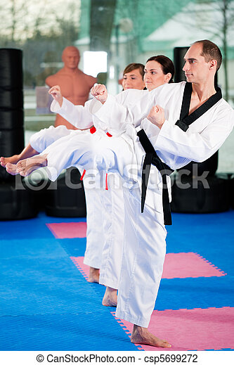 Martial Arts sport training in gym - csp5699272