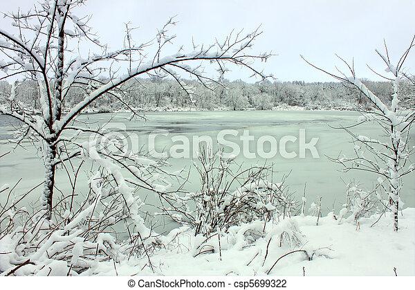 Pierce Lake Snowfall - Illinois - csp5699322