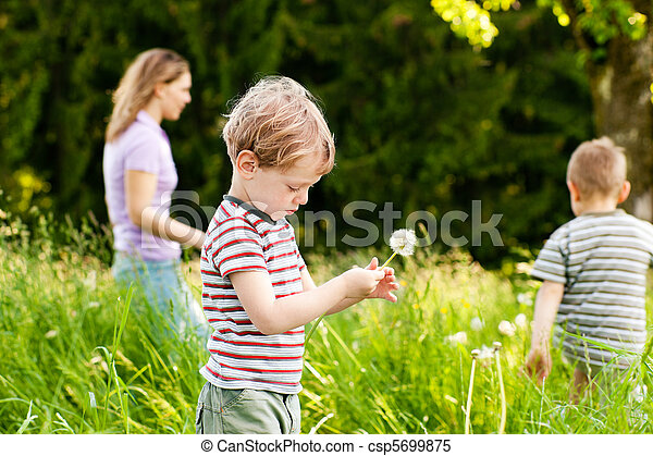 Family summer - blowing dandelion seeds - csp5699875