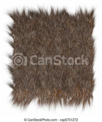 Fur Clipart The texture of fur bear: imgarcade.com/1/fur-clipart